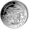Somalië 100 Shillings 2012